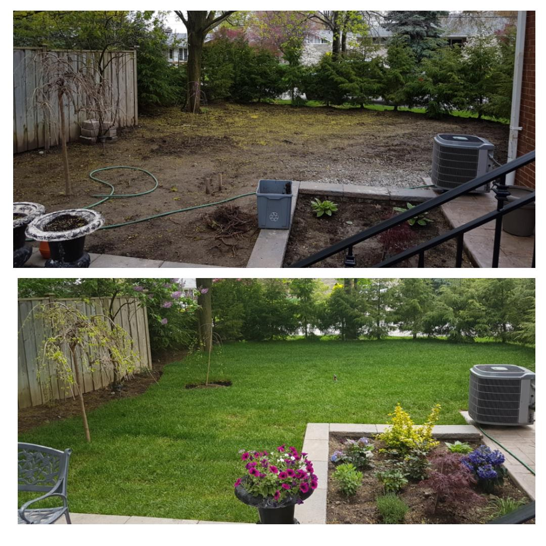 Before & After Images of Our Projects - Simple Solutions ...