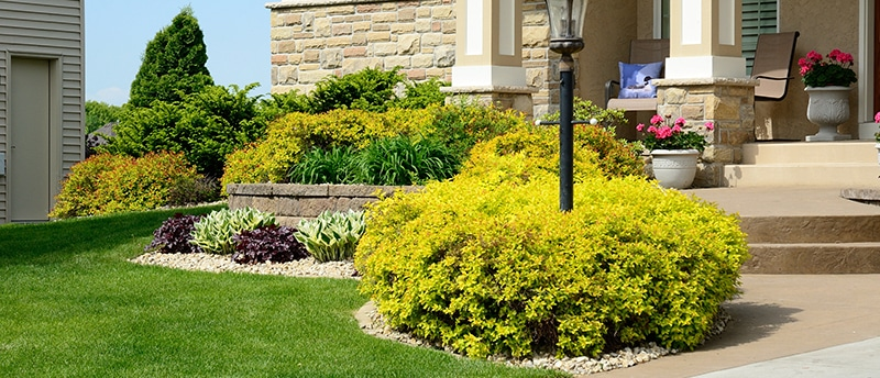What Does Landscape Construction Service Include?