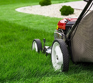 Everything You Need to Know About Lawn Mowing