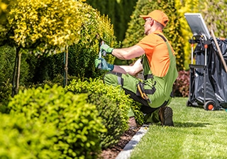 How Finding the Right Landscaping Company Can Help You