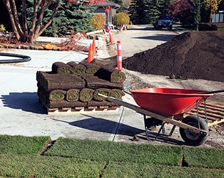 Sod Installation & Care: DIY Vs Professional Landscaping Services