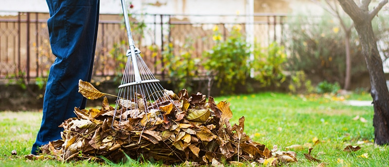 Why Must You Hire Property Maintenance Service for Fall Clean-Up