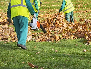 Why Hire Property Maintenance Services for Fall Clean-Up?