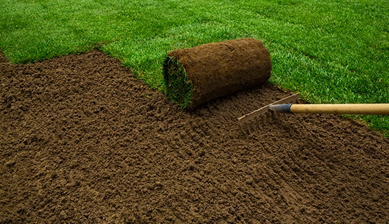 landscaping company in Richmond Hill