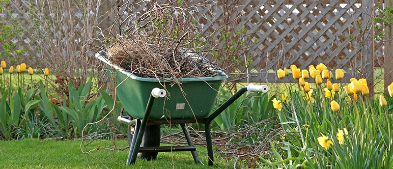 5 Important Benefits of a Spring Clean-up
