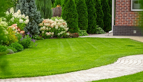 Landscaping Services in Newmarket