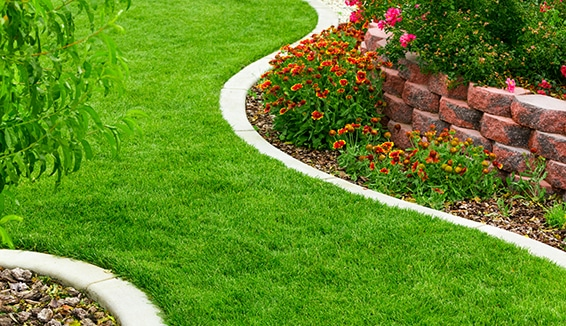 Landscape Construction in King City