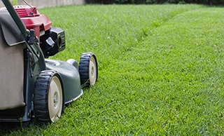What are the Benefits of Grass Cutting & Lawn Mowing?