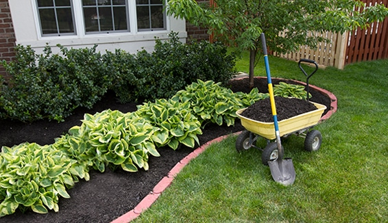 Landscaping Company in Aurora
